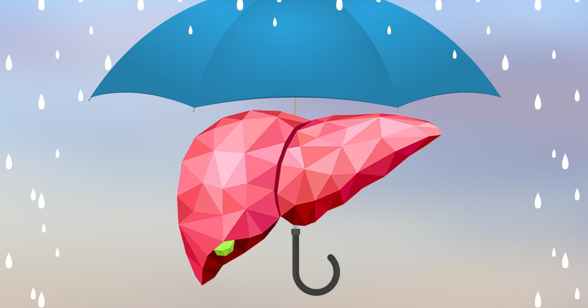 Ficatul protejat de umbrelă
